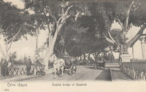 Cairo , Egypt , 1900-10s ; English Bridge at Ghezireh