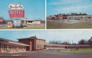 Multi-View, Martha Kay Motel, Swimming Pool, U.S. Highways 1 and 301, PETERSB...
