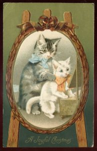 h2164 - CHRISTMAS Postcard 1908 Embossed Cats  by Winsch