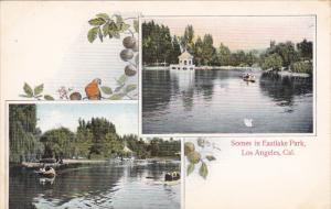LOS ANGELES , California , 00-10s ; Scenes in Eastlake Park