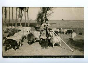 173289 BULGARIA SOFIA sheepherd musician Vintage photopostcard