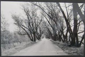 Willow Road To Tip-Town Shell Lake WI  Real Photo Postcard