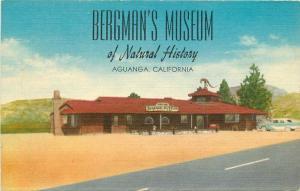 Aguanga California Bergman's Museum 1950s Postcard Lacquer Graph 2045