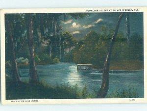 W-border NATURE SCENE Silver Springs - Near Ocala Florida FL AD4801