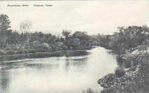 Connecticut Canaan Housatonic River Albertype