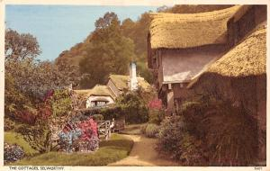 Selworthy, The Cottages (Exmoor National Park) Greetings, Best Wishes!
