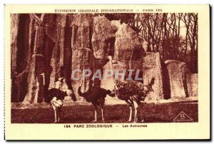 Old Postcard Exposition Coloniale Internationale Paris Zoo Zoo The Ostriches