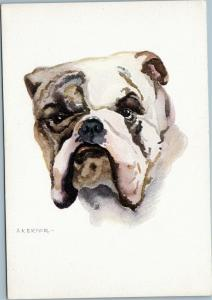 artist signed postcard Bulldog - A. Kermer