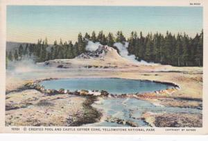 Yellowstone National Park Crested Pool and Castle Geyser Cone Curteich