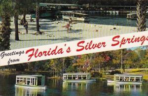 Florida Greetings From Floridas Silver Springs