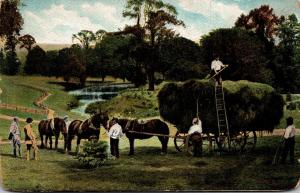 Hay Making Scene Farmers and Horse Drawn Wagon Loaded With Hay