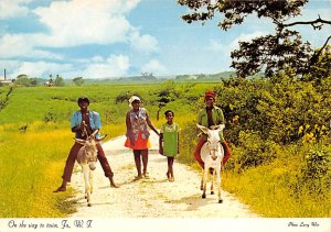 Jamaica, Jamaique Post card Old Vintage Antique Postcard On the Way To Town U...