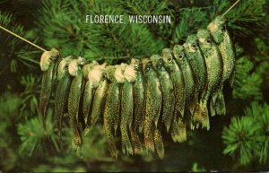 Wisconsin Florence Fishing Day's Caatch Of Crappies 1968