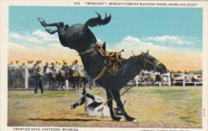 Wyoming Cheyenne Frontier days Midnight World Famous Bucking Horse Doing His ...