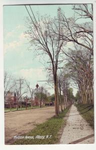 P329 JLs postcard 1908 albany ny madison ave used