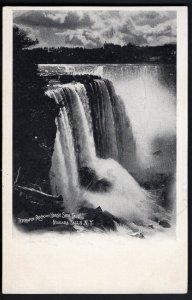 31020) New York NIAGARA FALLS Terrapin Rock and Horse Shore Fall pm1908 - Und/B