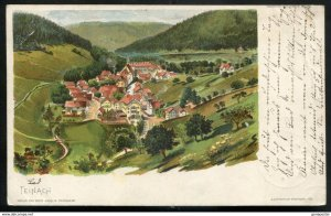 dc938 - GERMANY Teinach 1898 Litho Panoramic View