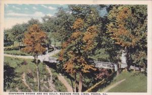 Illinois Peoria Suspension Bridge And Big Gully Madison Park Links