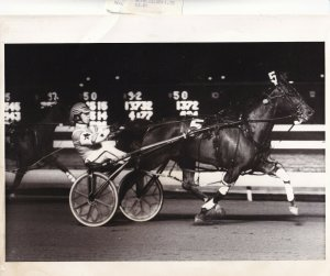 MEADOWLANDS RACETRACK Harness Horse Race, SWEET SHARON Wins Race, 1989