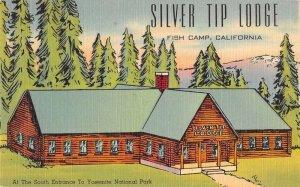 Fish Camp California Silver Tip Lodge Vintage Postcard AA9229
