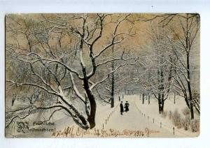 203375 LATVIA RIGA Plants in winter frost Vintage postcard