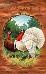 Thanksgiving With Turkeys 1914