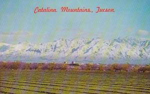Arizona Tucson Catalina Mountains
