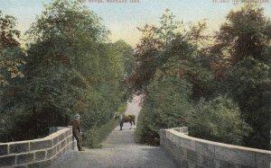 Monkland Glen , Herefordshire, England , 1900-10s ; Old Bridge