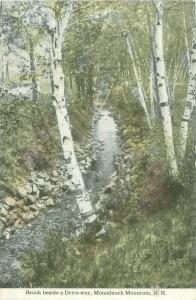 Birches, Brook Beside a Drive-way, Monadnock Mountains NH Old Postcard