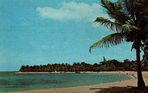 Half Moon Hotel Beach,Montego Bay,Jamaica BIN