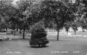 Wahoo Nebraska~City Park~Lots of Benches~Little Pine~1948 RPPC Postcard