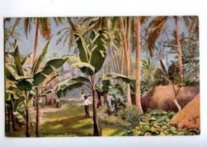 173201 FIJI village scene Vintage TUCK postcard