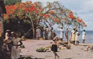 Trois-Rivieres, Open air market, Martinique,France,40-60s