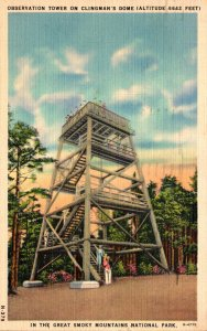 Tennessee Smoky Mountains Observation Tower On Clingman's Dome 1943