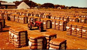 Bales Of Cotton With Cotton Gin In Background