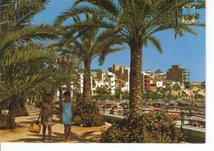 Postal 045843 : Benidorme (España). Parque de Colon