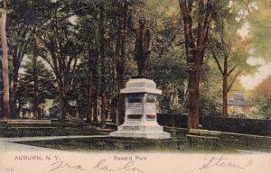 Seward Park Auburn New York