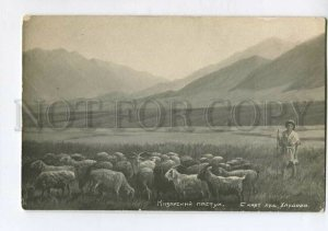 3132535 Kazakhstan Type Shepherd by KHLUDOV Vintage russian PC