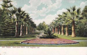 Palms, East Lake Park, Los Angeles, California, 00-10s