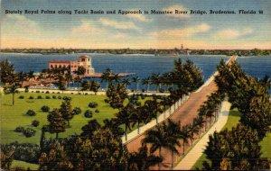 Florida Bradenton Stately Royal Palms Along Yacht Basin and Approach To Manat...