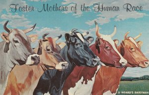 COWS , Foster Mothers of the Human Race , 1950-60s