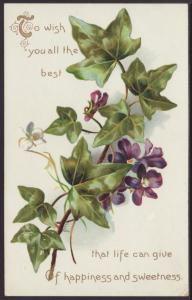 To Wish You All The Best,Ivy Postcard