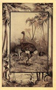 Great White Hunter~African Safari Serie~Ostrich~Jungle Snake Border~'09 MJ Mintz