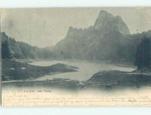 Pre-1907 LAKE SCENE Lac De Taney In Valais Switzerland hJ6574