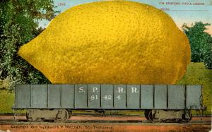 Exaggeration - I'm Sending You A Lemon from______