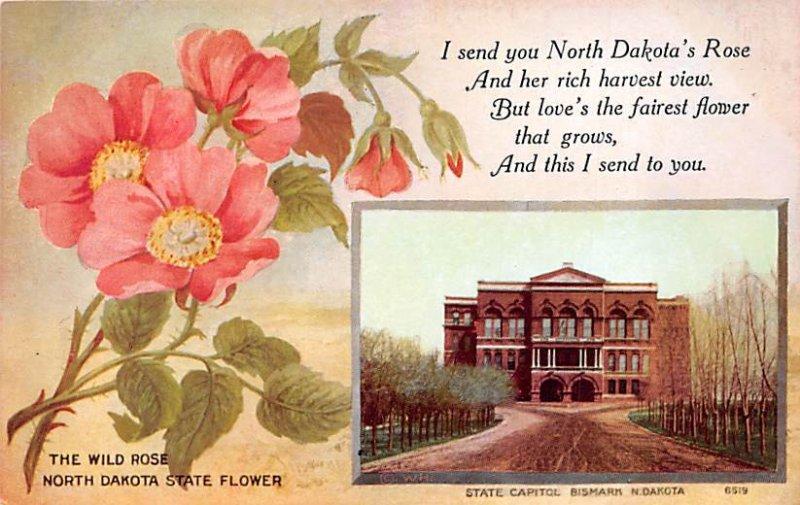 North Dakota Bismarck, North Dakota, USA State Capitol Unused