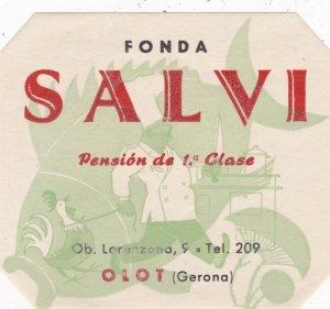 Spain Olot Gerona Pension Salvi Vintage Luggage Label sk4500