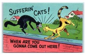 Postcard  Sufferin' Cats! cat fight brick wall comic unused W20