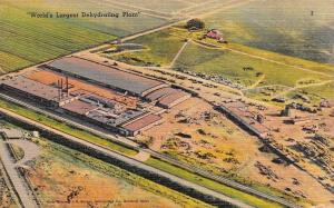 CALDWELL, ID Idaho  JR SIMPLOT DEHYDRATING CO~Aerial View  CANYON CO  Postcard
