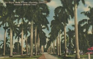 CLEWISTON , Florida, 30-40s; Royal Palm Avenue